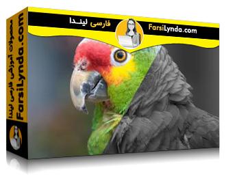 لیندا _ آموزش اصلاح غیر مخرب رنگ و اکسپوژر در Photoshop CC 2017 (با زیرنویس)