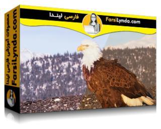 لیندا _ آموزش تعمیر و بهبود کیفیت ویدیو (با زیرنویس فارسی AI)