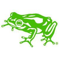 frog - قورباغه
